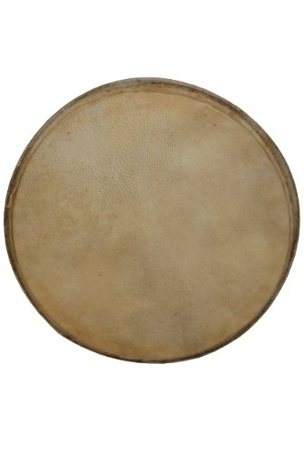 Goatskin Head for Doumbek, 10'' by Mid-East