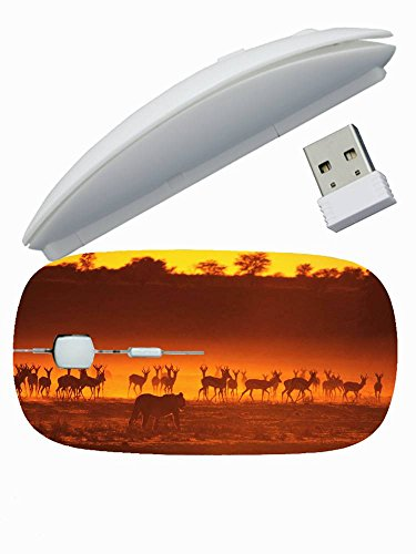 Fashionable Designed ( Animals antelope lion hunting animals nwalk sunset silhouette ) Gaming Mouse Wireless Mice Good For Girl's 2.4 GHz -3 Adjustable DPI Levels - Nano USB wireless receiver ()
