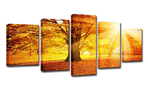 FOLOIN Modern Home Decor 5 Panel Canvas Painting HD Printed Frame Room Wall Art Poster Autumn Morning Woods Landscape Pictures
