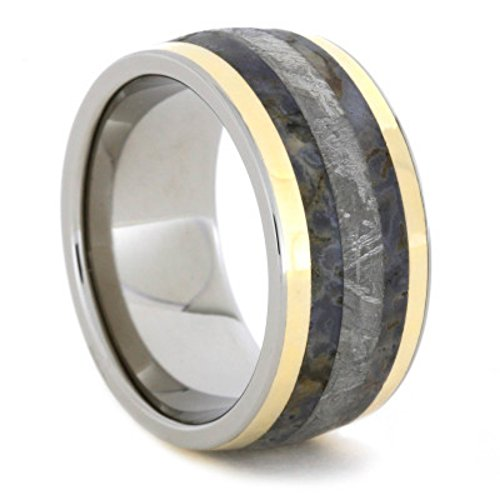 Gibeon Meteorite, Dinosaur Bone, 14K Yellow Gold 11mm Comfort-Fit Titanium Ring, Size 8.25 by The Men's Jewelry Store (Unisex Jewelry)