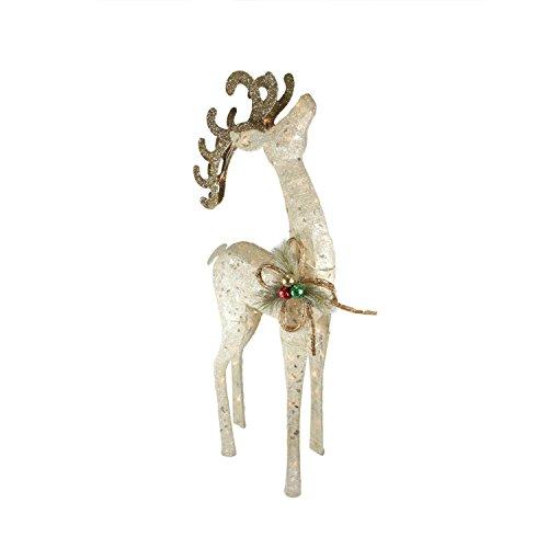 Indoor Reindeer - 46