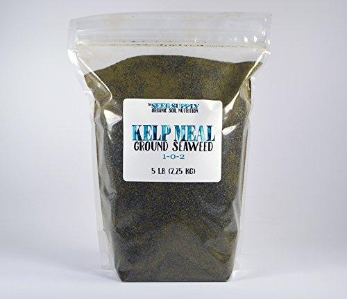 5-pounds-organic-kelp-meal-1-0-2-natural-norwegian-kelp-seaweed-fertilizer