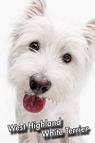 West Highland White Terrier: 2020 Weekly Calendar | 12 Months | 107 pages 6 x 9 in. | Planner | Diary | Organizer | Agenda | Appointment | Half Spread Wide Ruled Pages