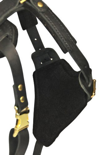 Dean and Tyler The Blade with Handle Brass Belt Style Buckles Leather Dog Harness, Black, Large - Fits Girth Size: 31-Inch to 41-Inch by Dean & Tyler (Image #1)