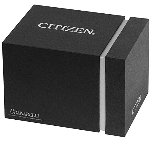 Armbandsur Citizen of Collection 2019 BU3020-82L
