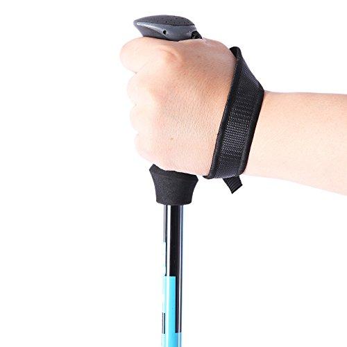 Sportsun Trekking Poles Walking Hiking Sticks for Travel Hiking Climbing- Durable Adjustable Anti-shock Set of 2 (Blue)
