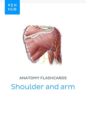 Anatomy flashcards: Shoulder and arm: Learn all bones, ligaments and ...