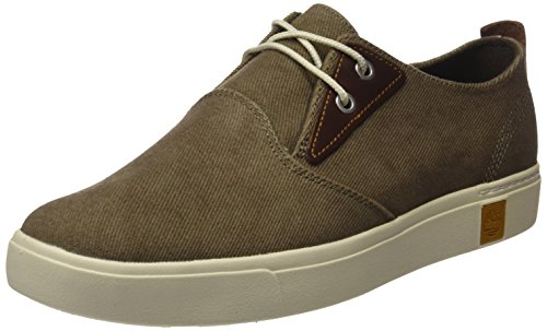 Amherst Canvas Uomo Oxford Cotton Timberland Scarpe Canvas Cotton Verde Ptocanteen Canteen vxwqxBdf