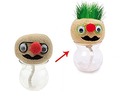Mister Potato crece-pelo: Amazon.es: Hogar