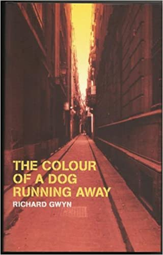 Book The Colour of a Dog Running Away