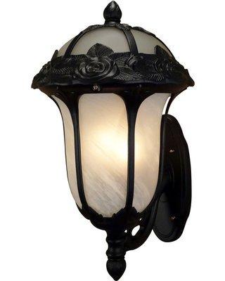 Special Lite Rose Garden Pendent Light with Alabaster -