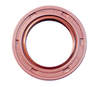 TC Double Lip w//Stainless Steel Spring 2 PCS EAI VITON Oil Seal 15mm X 25mm X 5mm Metal Case w//Viton Rubber Coating