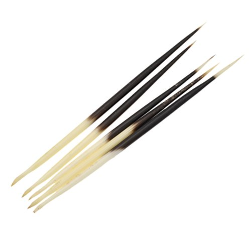 Native American Clothing Patterns (Porcupine Quills Hair Stick Indian Crafts Accessories Fishing Buoy DIY 5