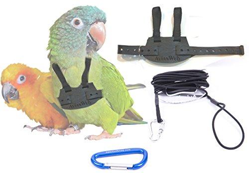 Bird Leash (EZ RIDER Bird Harness with 8 Ft Leash (Conure / Standard (i.e. Sun Conure)))