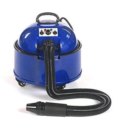 pedigroom profesional perro Grooming Pet secador de pelo secador de pelo Blaster azul 2800 W: Amazon.es: Productos para mascotas