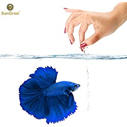 Betta Food Powder --- Fish Food Promotes Longevity - Gluten Flour imparts color, promotes fin development - Spirulina boosts Immune System - Fish Oil rich in Omega-3 fatty acids controls inflammation