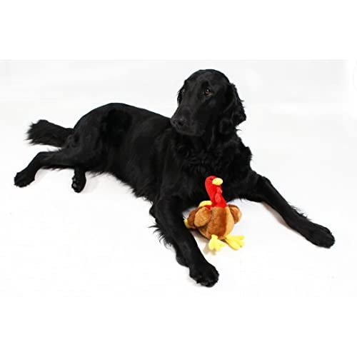 outlet Turkey Dog Toy by Midlee