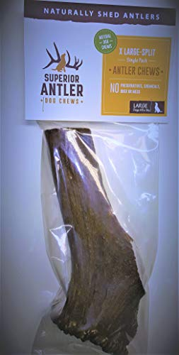 (1-X Large Antler, Split, Single Pack - XL All Natural Premium Grade A. Antler Chew. Naturally Shed, Hand-Picked, and Made in The USA. NO Odor, NO Mess. Guaranteed Satisfaction. for Dogs 45+LBSL)