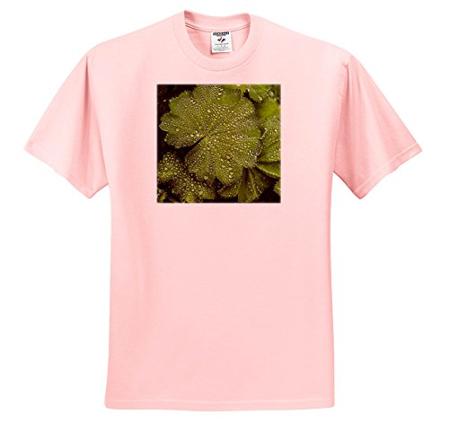 Price comparison product image Andrea Haase Nature Photography - Green Leaf With Drops Of Water Close up - T-Shirts - Youth Light-Pink-T-Shirt Large(14-16) (TS_264673_46)