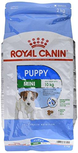 Royal Canin Mini Dog Junior