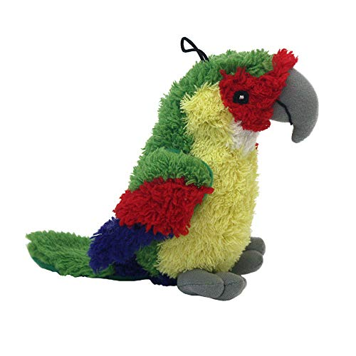 look who talking parrot dog