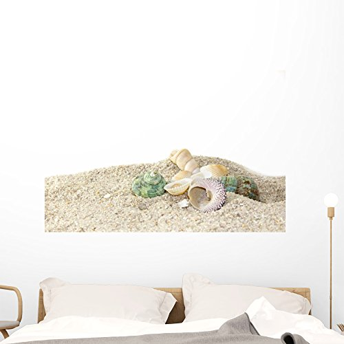 Wallmonkeys Seashells on Sand Stones Wall Decal Peel and Stick Graphic WM320621 (48 in W x 32 in H) (Shell Wall Horizontal)