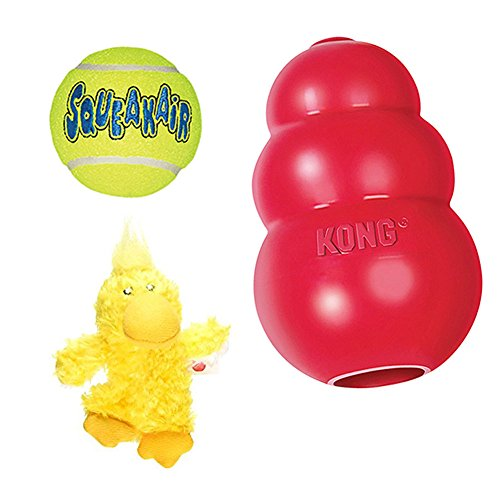 Classic Kong Toy - 5