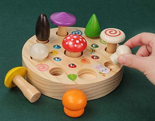 Puzzle de tri en Bois Montessori /Jouet Educatif Pr/éscolaire dapprentissage Pr/écoce pour Les Enfants de 2 /à 3 Ans XIAPIA 2 en 1 Jouet de Motricit/é en Bois Abeille Motor Skill Toy Jeu dAssociation