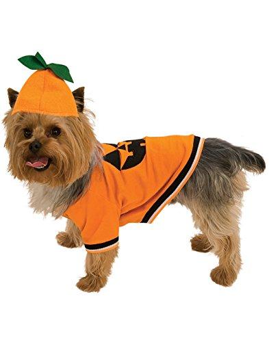 Rubie's Pumpkin Pet Costume, Small]()