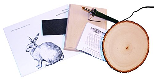 Walnut Hollow Creative Woodburning (Pyrography) Kit for the Beginner in Arts, Crafts & - Start That F Brands With