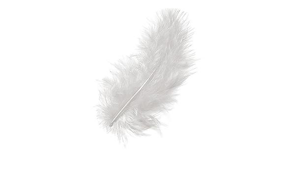 Knorrprandell 6619614/Marabu plumes Noir 10/cm