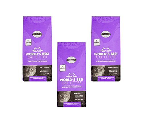 Outstanding Odor Control 28 lb, Lavender Scented, Multiple Cat Formula (3 Pack)