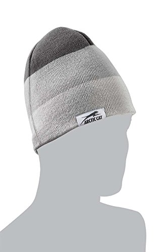 (Arctic Cat Unisex Adult Beanies & Knit Hats (Gray, One Size))