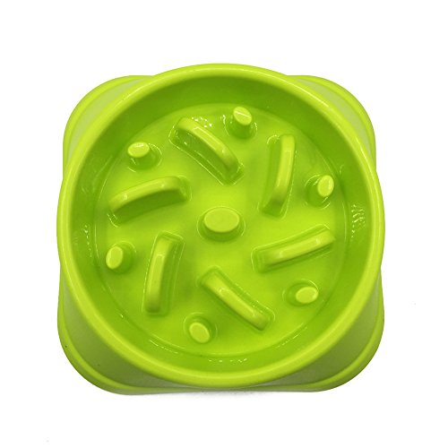 Pet Cuisine Slow Feeder Bowl Anti-Gulping Dog Slower Food Feeding Dishes Stop Bloat from Eating too Fast Jungle