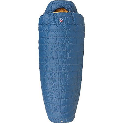 Big Agnes Deer Park 30 600 DownTek Sleeping Bag
