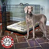 Cheap Majestic Pet™ Titan 48″ Dog Crate Crate Mat & Divider Panel