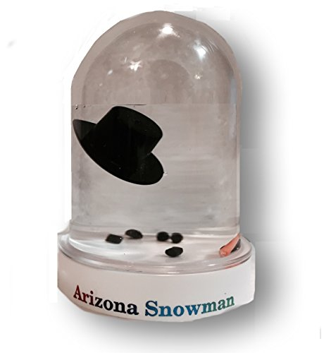 The Original Melted Snowman Snowglobe - Arizona Snow Globe]()