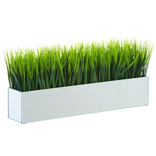 9'' Hx19 W Grass Silk Plant w/Mirror Vase -Green (pack of 2) by SilksAreForever