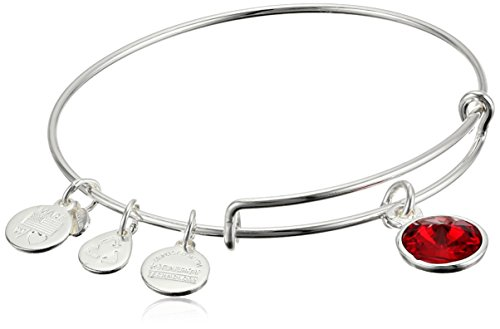 Alex And Ani  Bangle Bar July Imitation Birthstone Shiny Silver Tone Expandable Bracelet