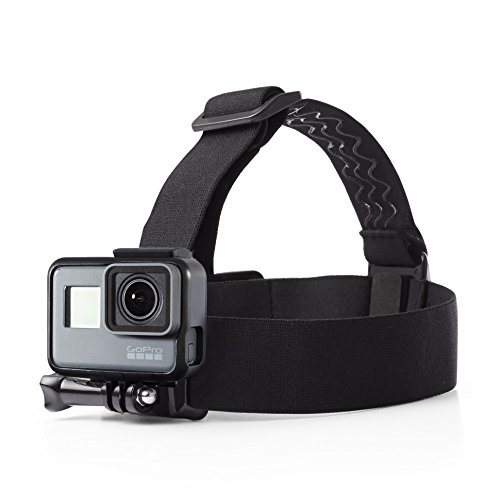 AmazonBasics Strap Camera Mount GoPro