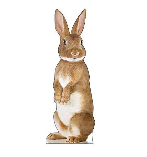 Advanced Graphics Bunny Rabbit Life Size Cardboard Cutout Standup -