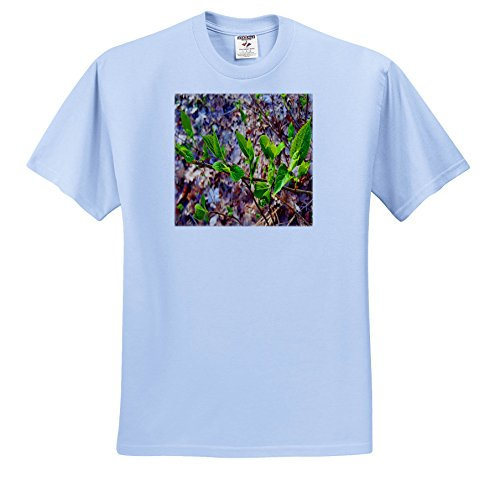 TDSwhite – Spring Seasonal Nature Photos - Spring Leaves Fill Forest - T-Shirts - Youth Light-Blue-T-Shirt XS(2-4) (ts_284315_59) ()