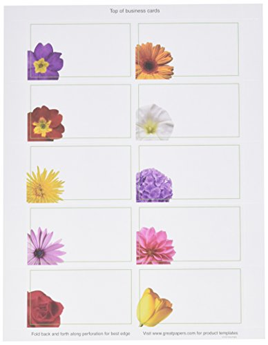 Great Papers! 914703 Floral Mini Cards, 10 sheets