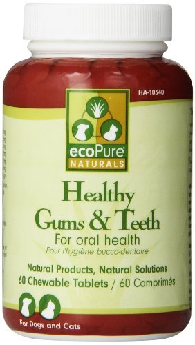 Ecopure Healthy - ecoPure Healthy Gums & Teeth Chewable Tablets, 60 ct by EcoPure