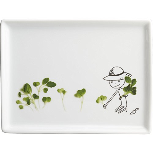 CB2 Oliver Microgreens Appetizer Plate