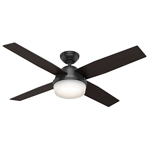 Black Outdoor Ceiling Fan With Light
