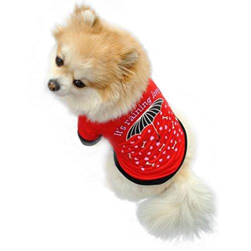 Pet Clothes, Howstar Puppy Umbrella Print T-Shirt Dog Sweatshirt Apparel (L, Red) (Poodle Sweatshirt Dress)