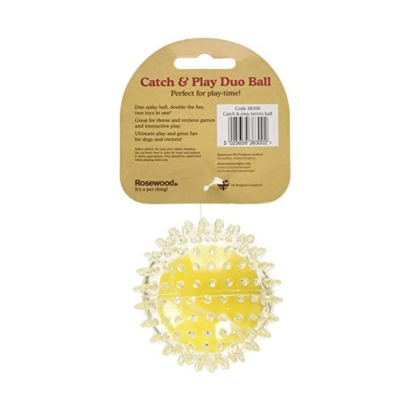 Rosewood Jolly Doggy Catch and Play Tennis Ball for Dogs 4