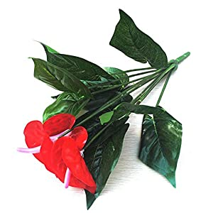 Yuwen Anthurium, Green Potted anthurium Flowers Indoor Green Plants Balcony Office Desktop Artificial Flowers Bonsai 19