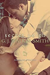 Secret North: Book 4 of The Wishes Series (English Edition)